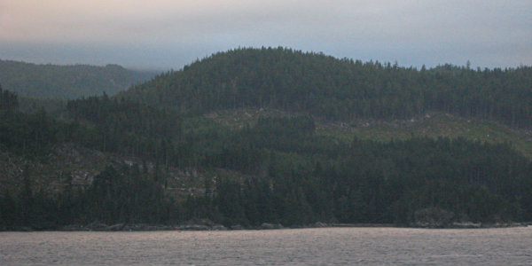 The coastal rainforests in Southeast Alaska are the largest in the US.