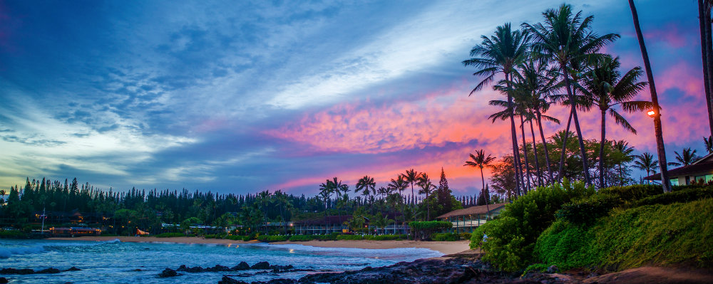 Hawaii.sunsets.palm .trees .coastline