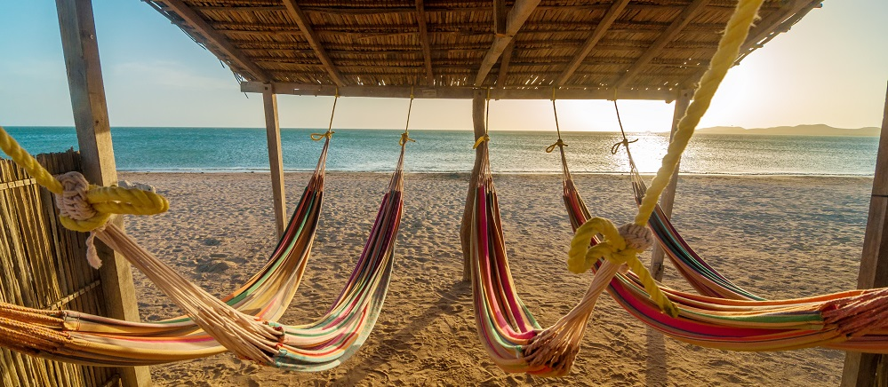Bright Hammocks And Beach