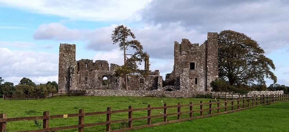Abbey Ruins Dublin County Meade Ireland