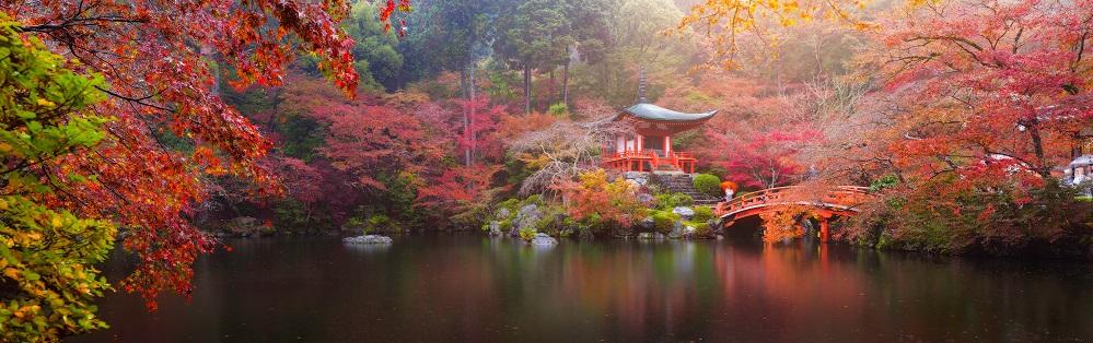 Daigo Ji Temple In Autumn