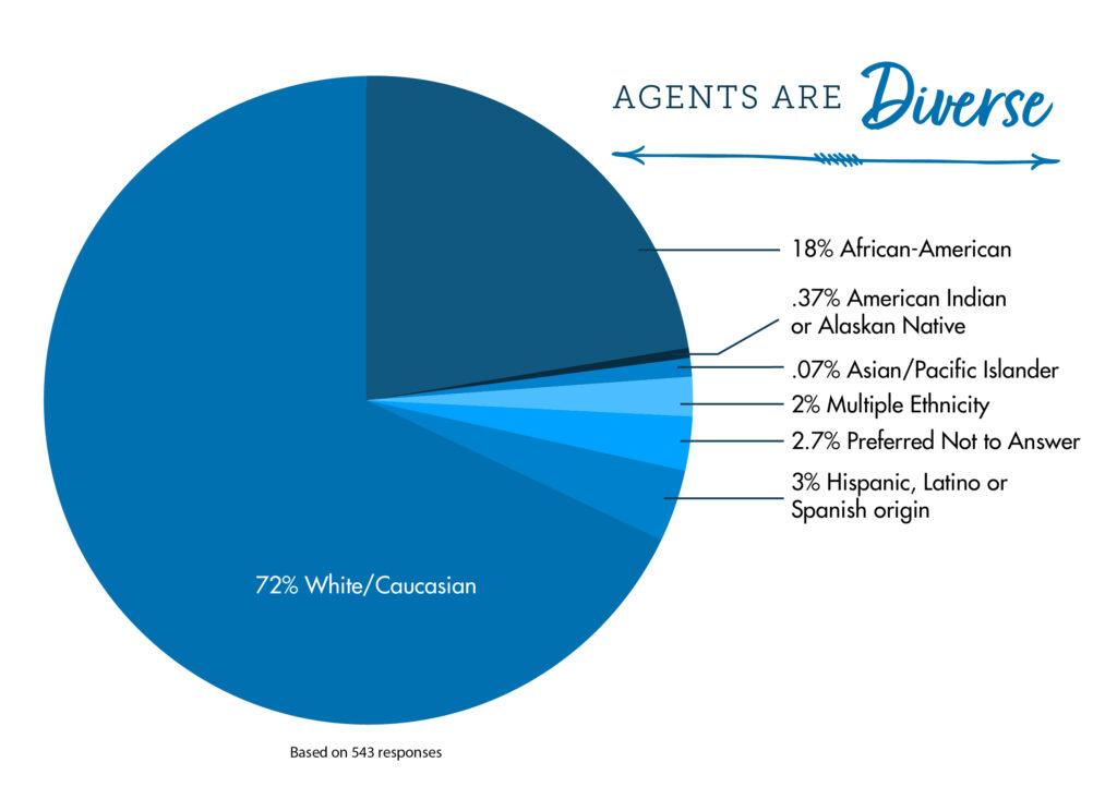 2021 03 Census Blog Diversity