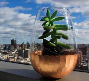 A glass vase holding a succulent plant, sitting on a window ledge with a city skyline in the background